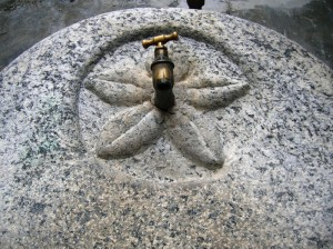 Fior di fontana