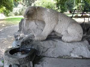 L'orso simbolo di Biella