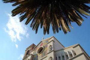 San Paolino e la Palma
