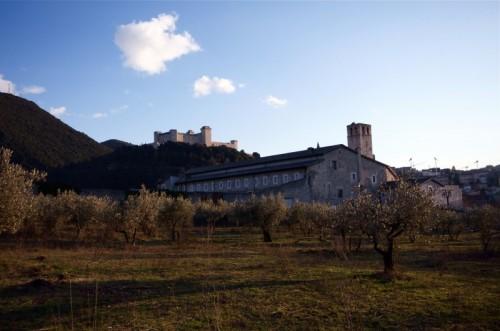 Spoleto - Chiesa tra gli ulivi