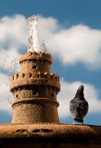 La fontana e l'ospite