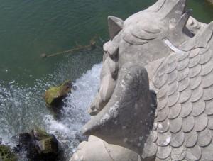 Pesce Fontana