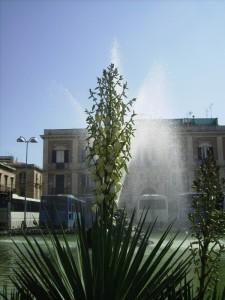 Fontana in Piazza delle Poste