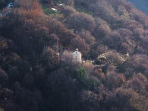 Un santuario nella foresta