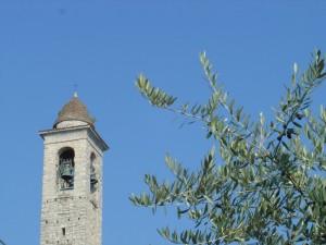 Pietre e olivi