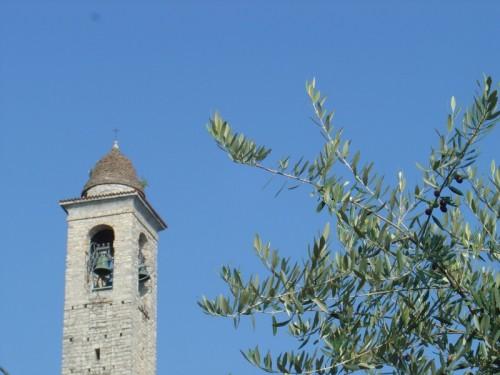 Valsolda - Pietre e olivi