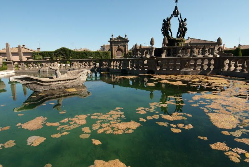 ''lucide alghe'' - Viterbo
