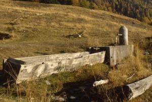 fontana d'alpeggio nel Gran Bosco di Salbertrand