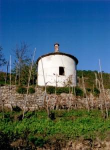Cappella campestre tra i filari della Bassa Langa