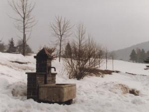 fontanella tra la neve