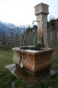 Corgnon - fontana alpina