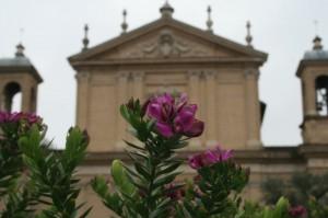 S.Anastasia in fiore - Circo Massimo - Roma