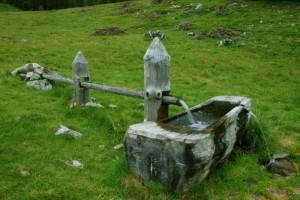 Fontana alpina