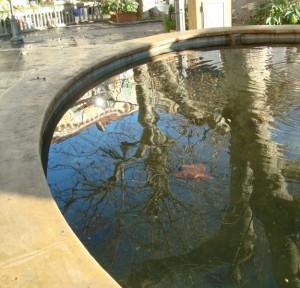 La fontana nella piazza che riflette il Borgo e il Castello Doria