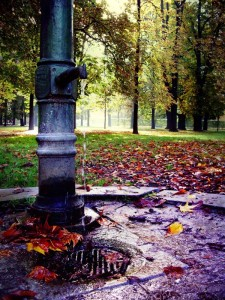 Fontana nel Parco Ducale