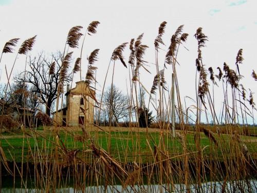 Fabbrico - La chiesa di San Genesio nascosta dalle fratte