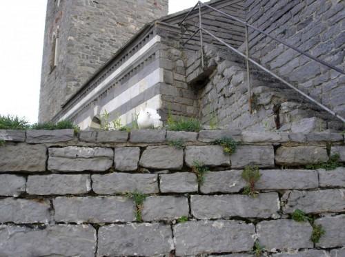 Portovenere - La colomba di San Pietro