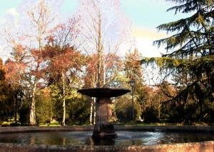 Fontana e colori del Massari..
