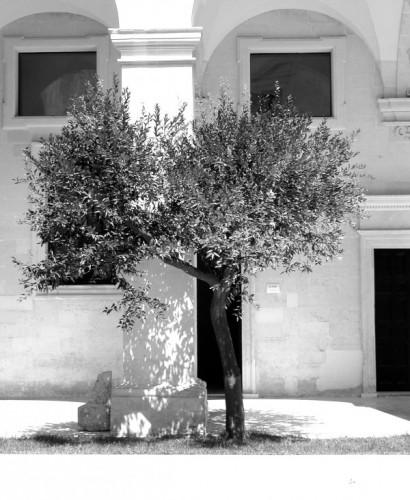Lecce - angolo