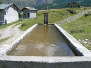 Un fontanile all'alpe Motta