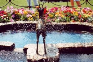 fontana del capriolo davanti allo stadio del ghiaccio