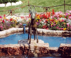 fontana del capriolo