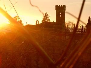 l'abbazia tra le vigne