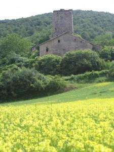 Antica torre di casa colonica