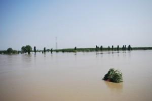 il letto del grande fiume Po in piena 1 maggio 2009