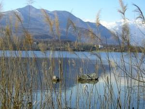 Lago di Avigliana2