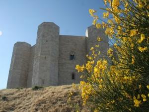 Il castello di federico profumato di ginestre