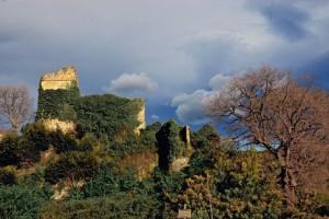 Le rovine del castello di Saccomuro
