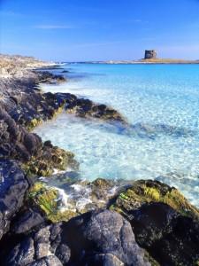 Spiaggia La Pelosa e torre