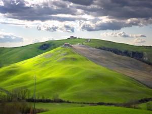 Paesaggio nella zona delle crete senesi - n.3