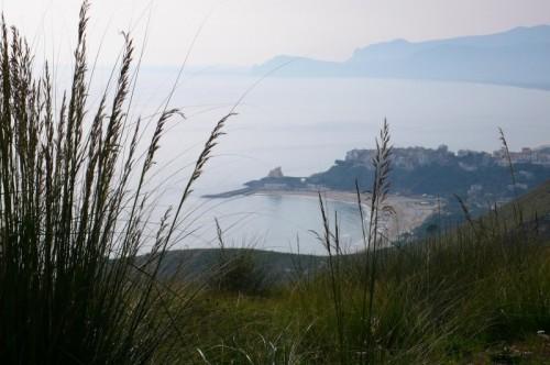 Sperlonga - Tra l'erba