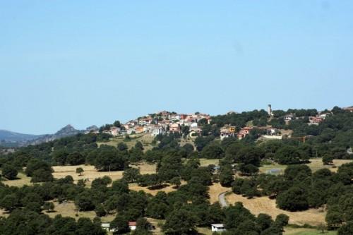 Lodine - Lodine