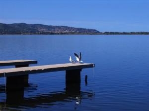 Un Amore in Laguna!