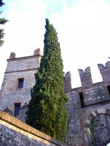 Castello di Serravalle - castello2