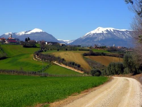 Sant'Omero - Sullo sfondo le gole del Salinello