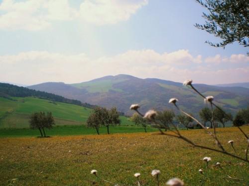 Oppido Lucano - Le vallate di Oppido