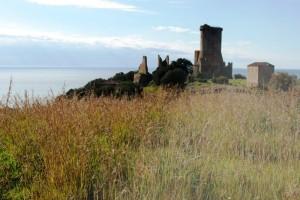La torre medievale di Velia