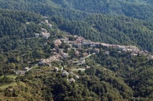 Nespolo dal Monte Cervia