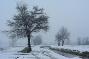 nevicata in pianura