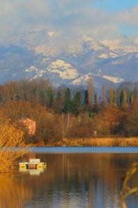 Il lago d'inverno