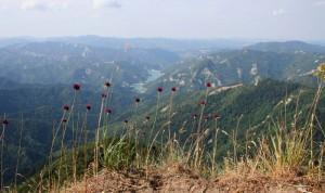 Ridracoli dal monte Penna