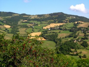 Le Mogne, San Damiano, Traserra