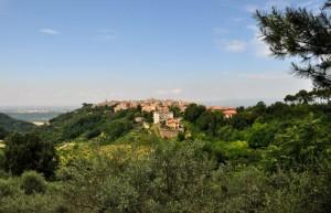 Panorama di Magliano Sabina (RI) - Foto n. 2
