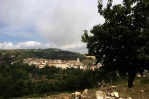 Panorama con ciliegio