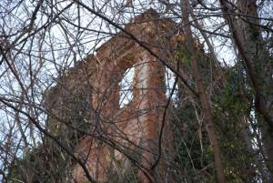 Torre abbandonata nella boscaglia