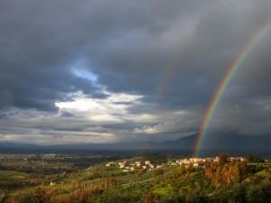 Panorami umbri (zona Montefalco)